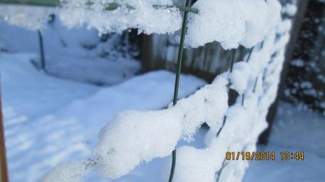 Wintersnow 013